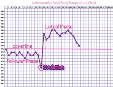 How to Measure Your<br /> Basal Body Temperature